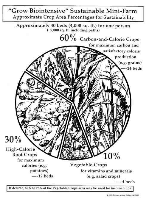 Perimtaria biointensive (pdf) D6ded5877a11fff9e88349a68cd27bf5