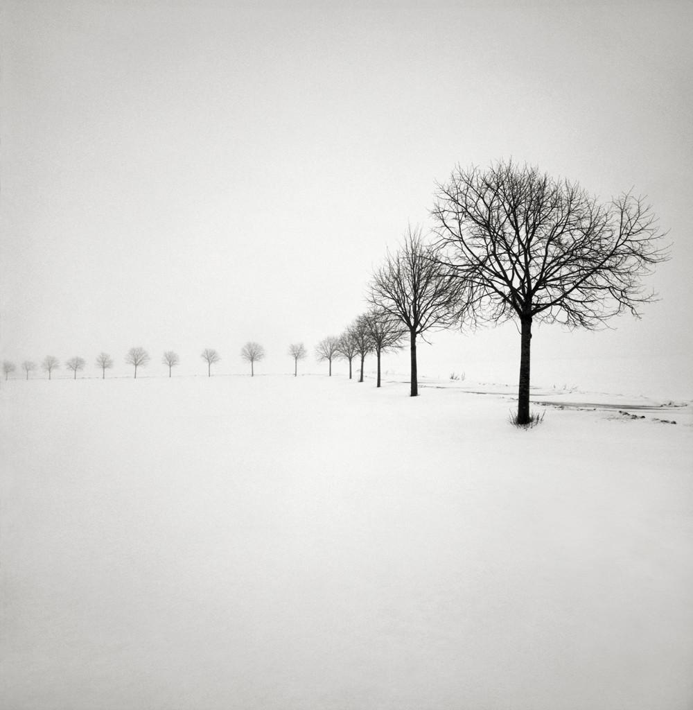 cherno-belye-peyzazhi-shvedskogo-fotografa-Hokana-Stranda 8