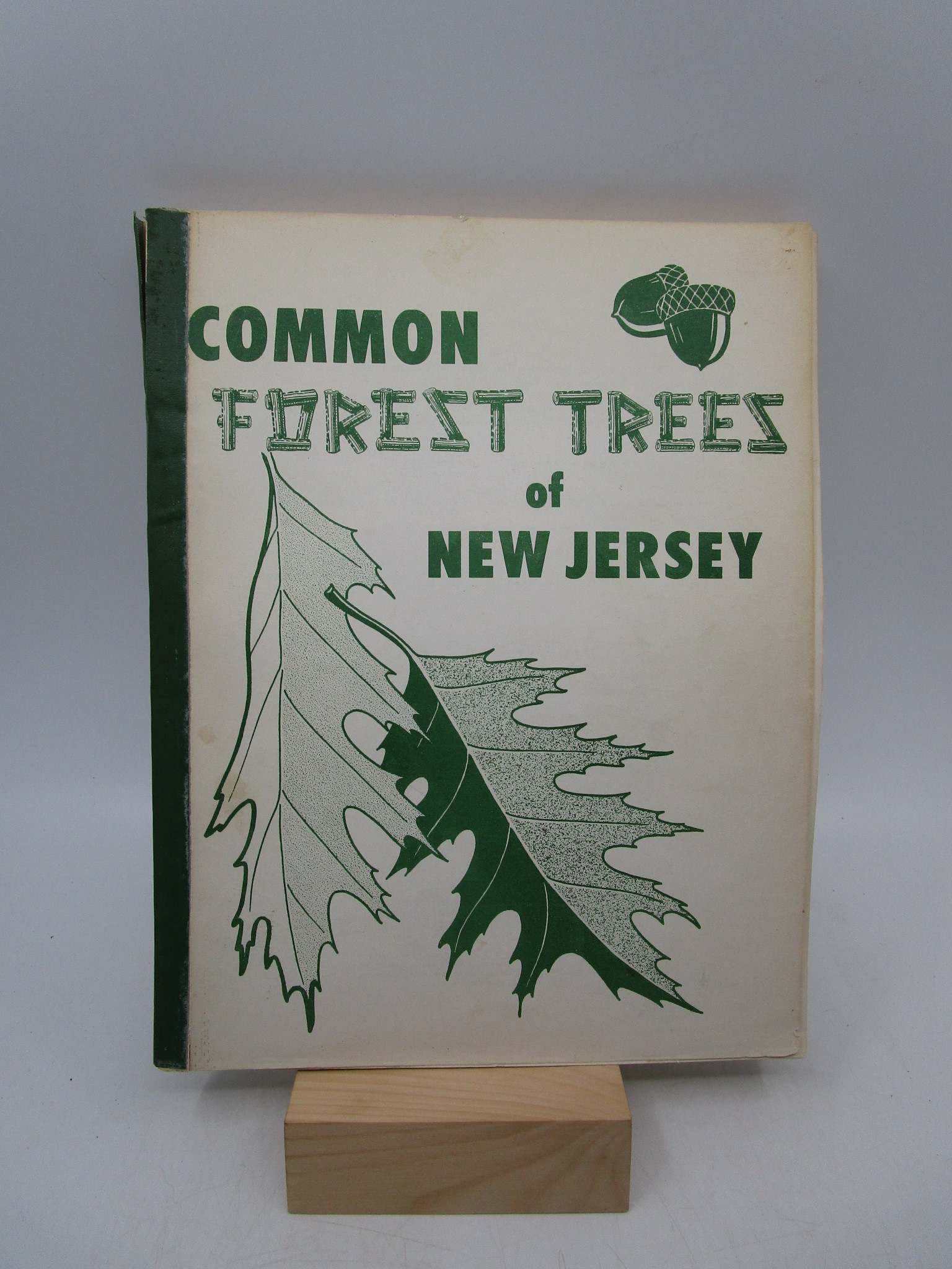 Image for Common Forest Trees of New Jersey: Extension Bulletin 396