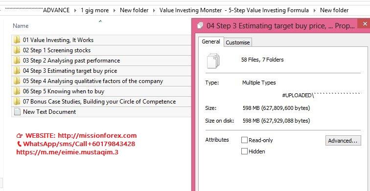 Value Investing Monster  - 5-Step Value Investing Formula