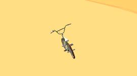 Problema na rotação da Bicicleta B1