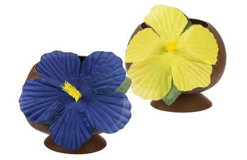 ქოქოსის ჭიქა ყვავილით