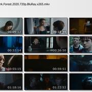 HUNSTU-Baba-Yaga-Terror-of-the-Dark-Forest-2020-720p-Blu-Ray-x265-mkv-thumbs