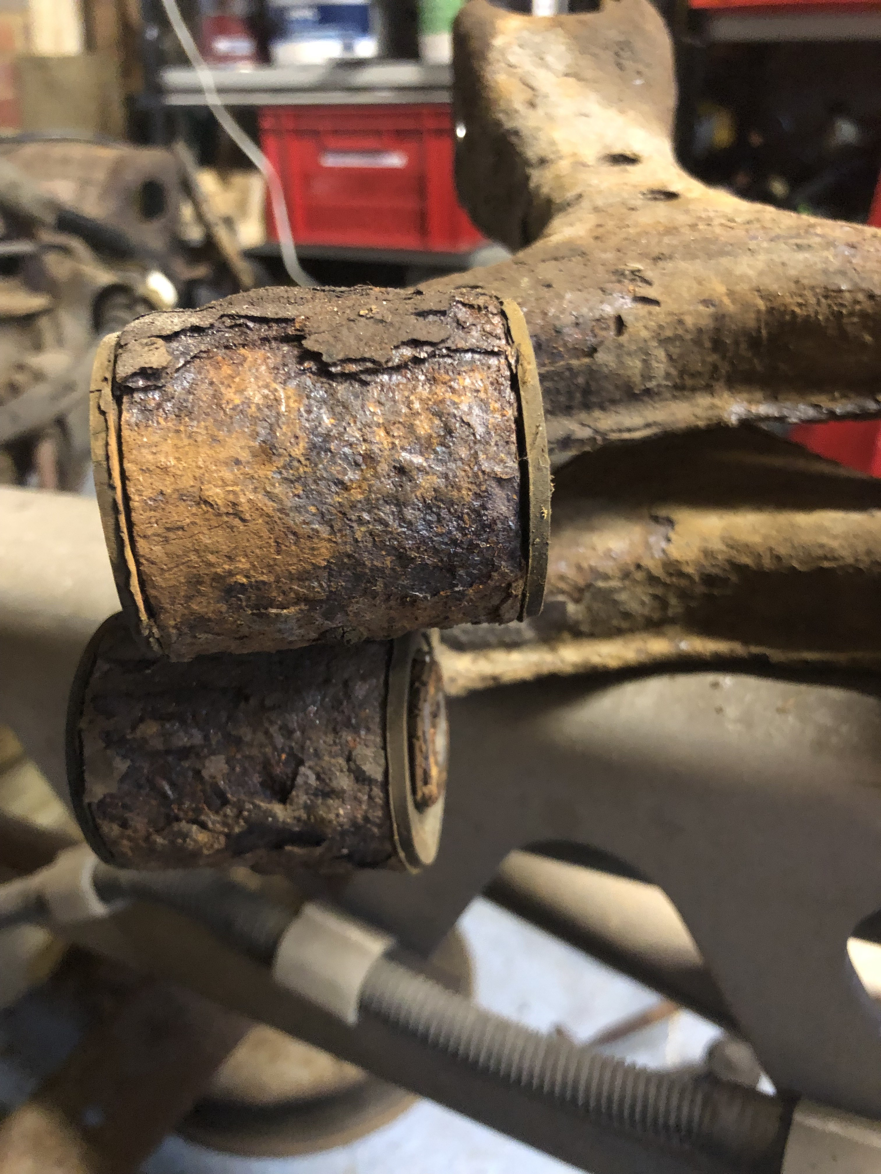 rear-Rust1