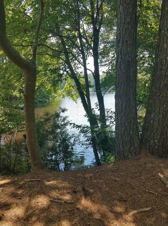 davis-lakes-2.jpg