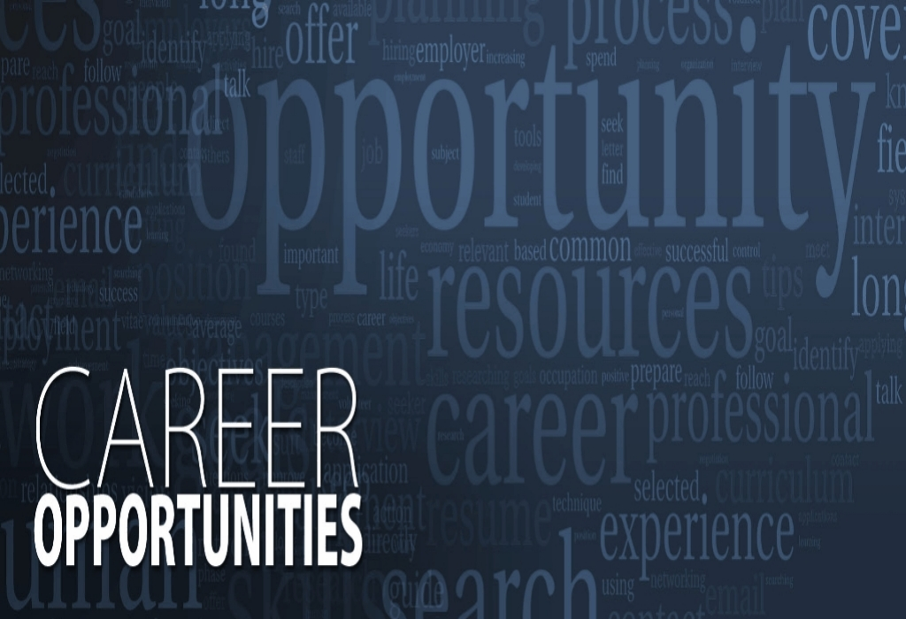 Career Opportunities Development