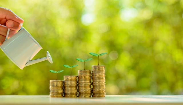 BIDLI-investice-ilustracni-fotografie-