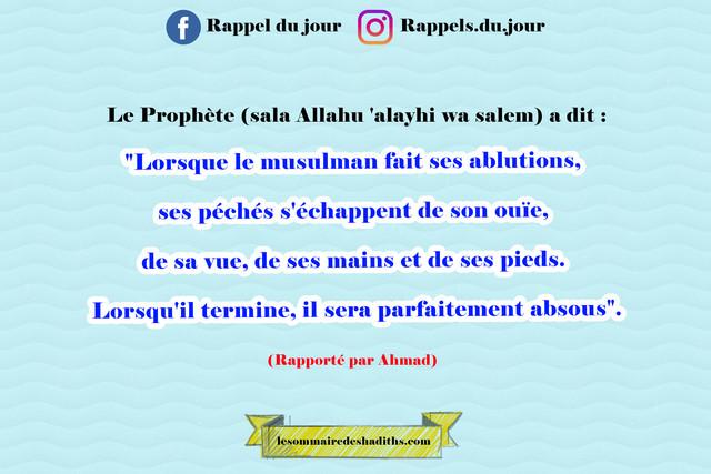 Lorsque le musulman fait ses ablutions, ses péchés s'échappent de son ouïe