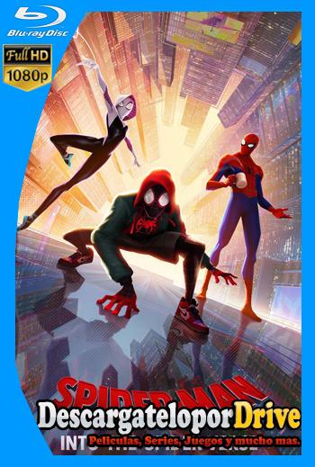 Spider-Man: Un nuevo universo (2018) [1080p] [Latino] [1 Link] [GDrive] [MEGA]