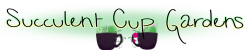 Succulent-Cup-Gardens-Small.png