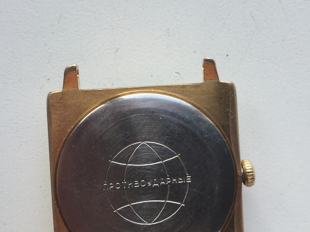 IMG-7934