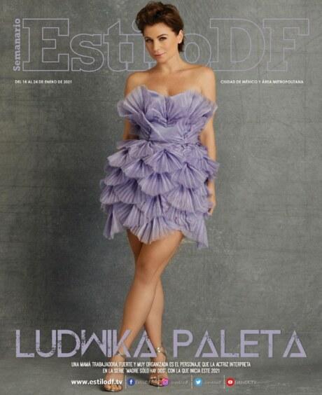 Estilo-DF-Ludwika-Paleta-17-enero