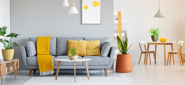 A Guide To Perfect Home Decor: Colours and Plants