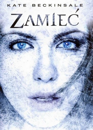 Zamieć / Whiteout (2009) PL.BRRip.XviD-GR4PE | Lektor PL