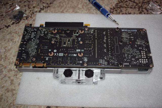 DSC-0530.jpg