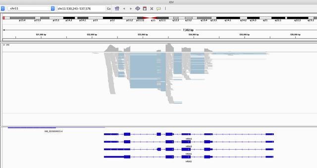 Example-RNA-seq-data