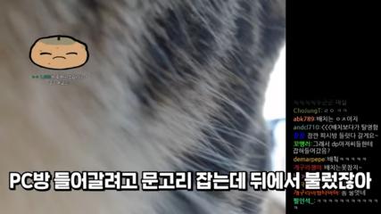 DP-0-50-screenshot