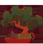 pyracantha-mini.png
