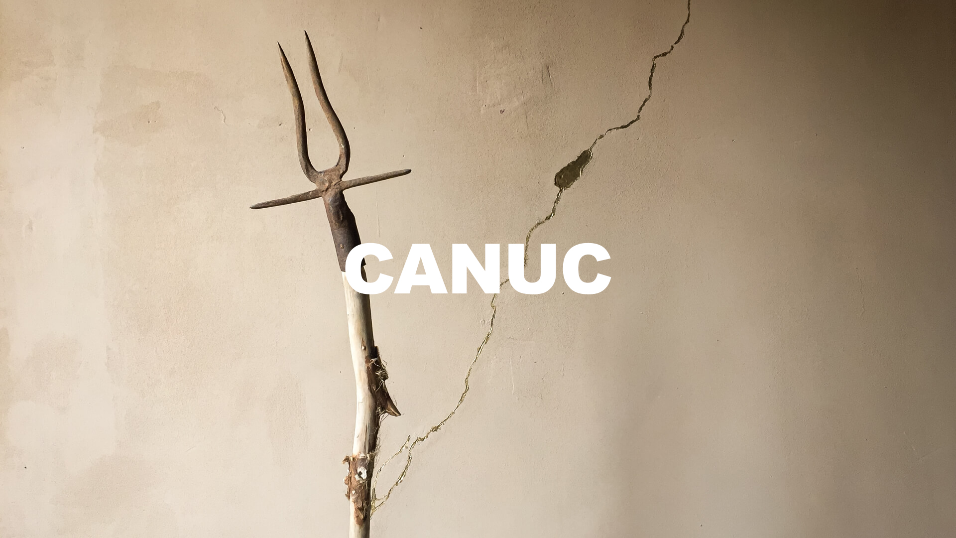 CANUC-AARON-NACHTAILER-ART-ARTIST-COVER
