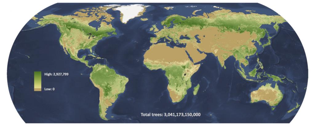 По последним подсчетам, в мире три триллиона деревьев, но и эти цифры могут быть занижены: данных по тропическим лесам не очень много. К тому же согласно новой работе получается, что в Амазонии деревья стоят менее плотно, чем на далеком Севере, во что не слишком просто поверить / ©Crowther et al.