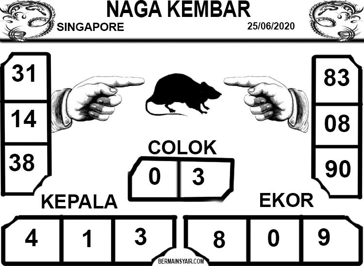 NAGA-KEMBAR-SGP
