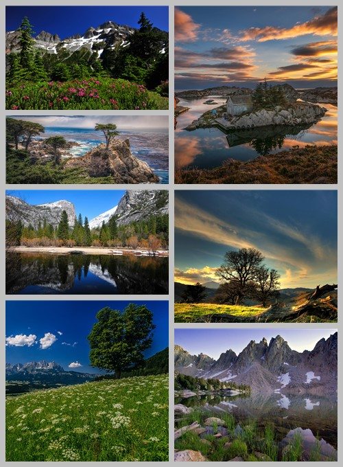 Most Wanted Nature Widescreen Wallpapers # 583