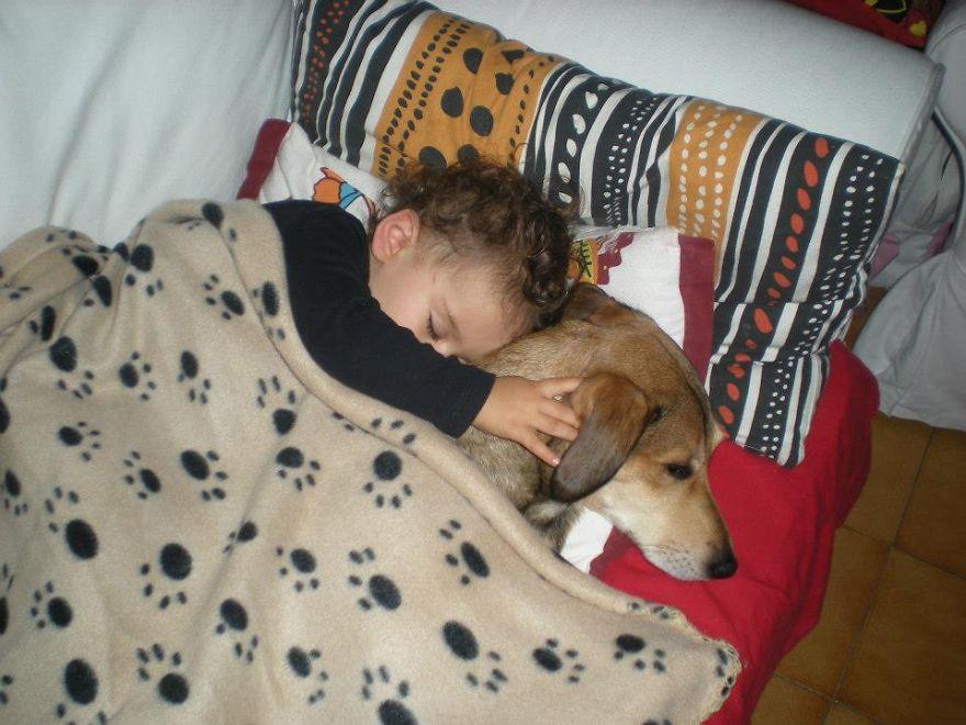 Когда собаки большие, а дети маленькие - 44 потрясающие фотографии - 29