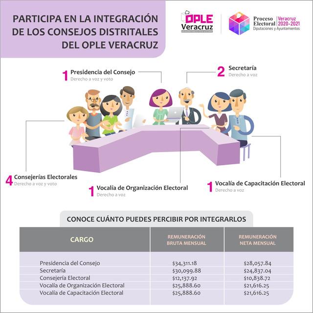Integraci-n-consejos-distritales-1