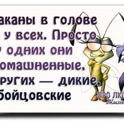 https://i.ibb.co/PQjNBcz/image.jpg