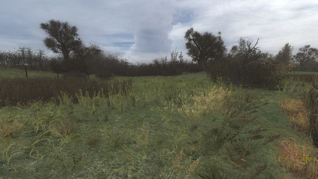 ss-10-18-18-16-24-15-marsh