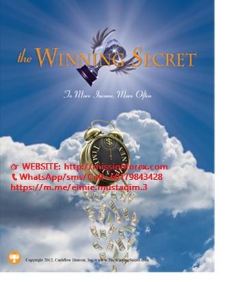 Peter Schultz - The Winning Secret Training(Enjoy Free BONUS Dr. Gary Dayton Wyckoff Upthrust)