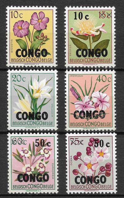 O Kongo K 11
