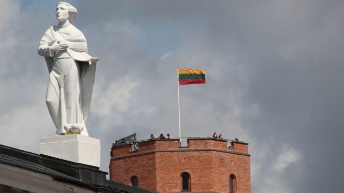 Литва решила поддержать энергетические планы Украины