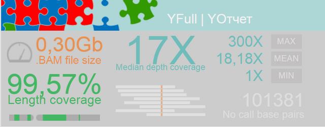 YFull-Stat
