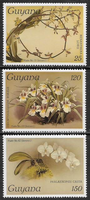 O Guyana 1548