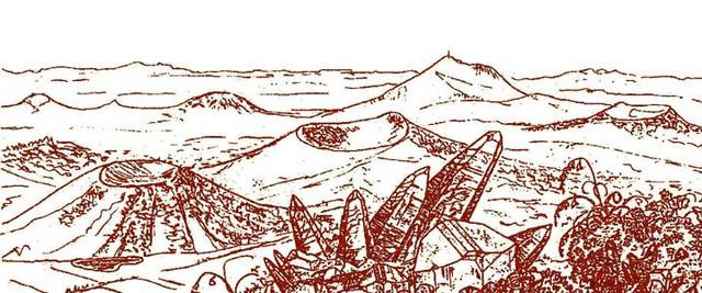 grand-paysage-brun