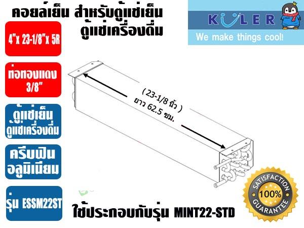 ESSM22-ST-2-copy
