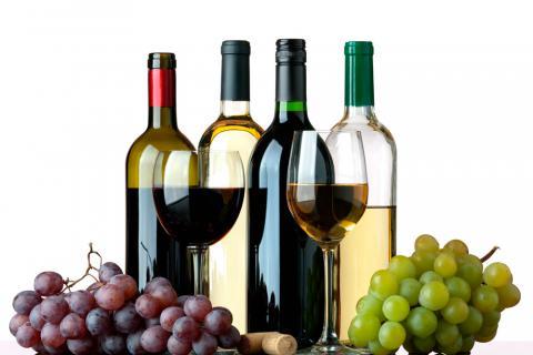 vino-0