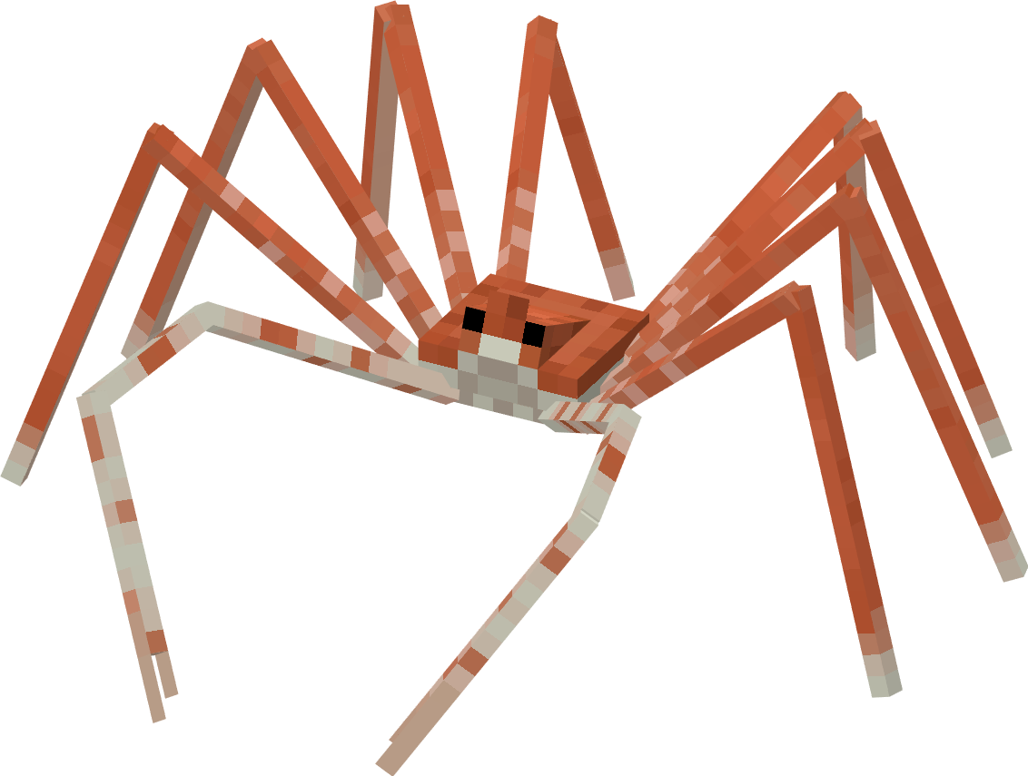 A giant spider crab