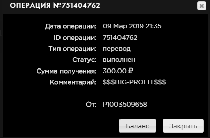Big Profit - big-profit.org Screenshot-3