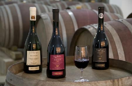Best-Georgian-Wine