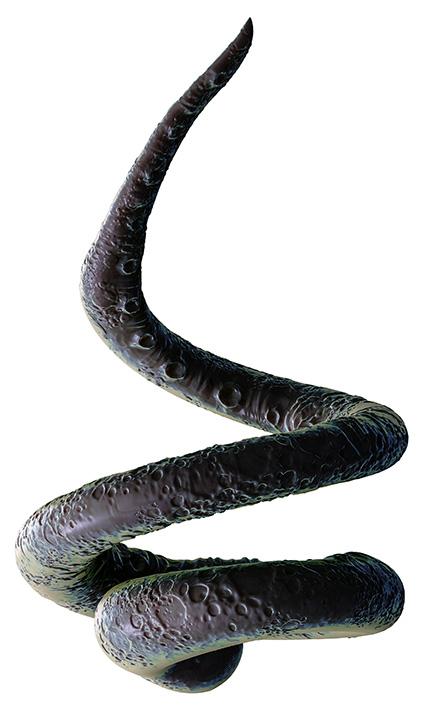 ultimate tentacle bundle stock photography organic cg tentacle demo neostock