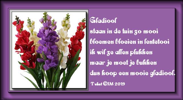 gladiool2019