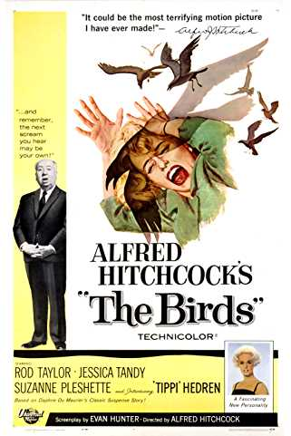 The Birds 1963 Download English 720p
