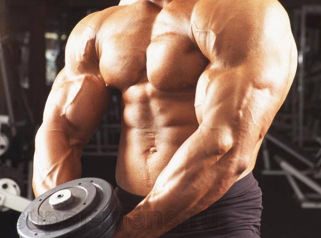 https://i.ibb.co/Pj08W0c/anaboliki-steroidi.jpg