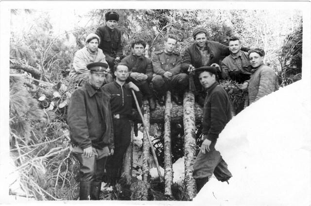 Dyatlov pass 1959 search 73