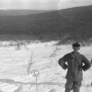 Dyatlov pass 1959 search 17