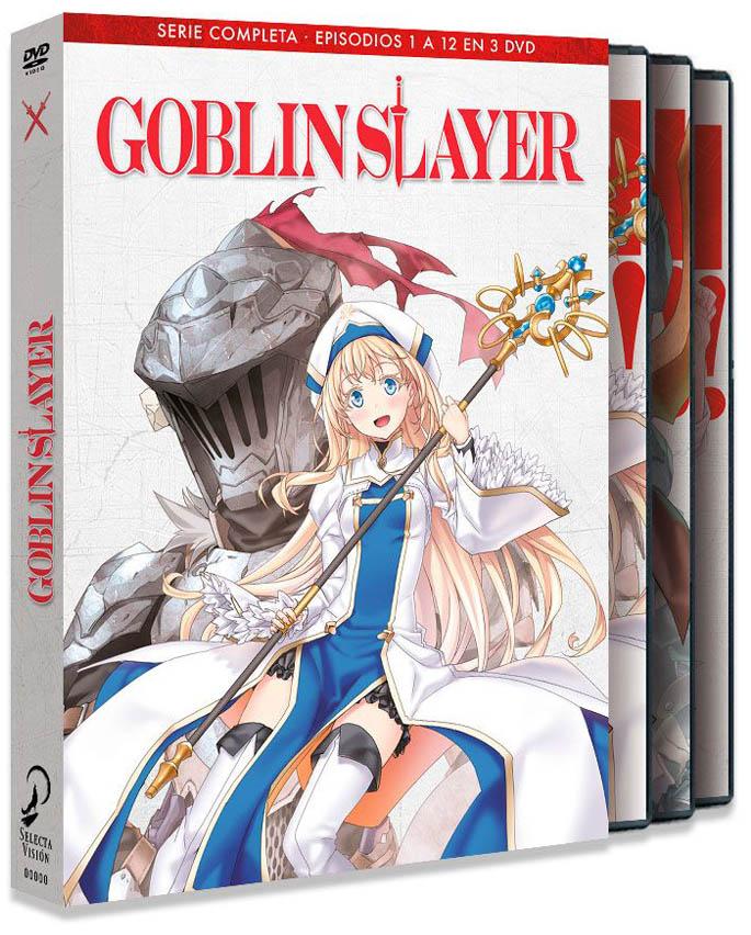 8424365720502-goblin-slayer-episodios-1-a-12-dvd.jpg