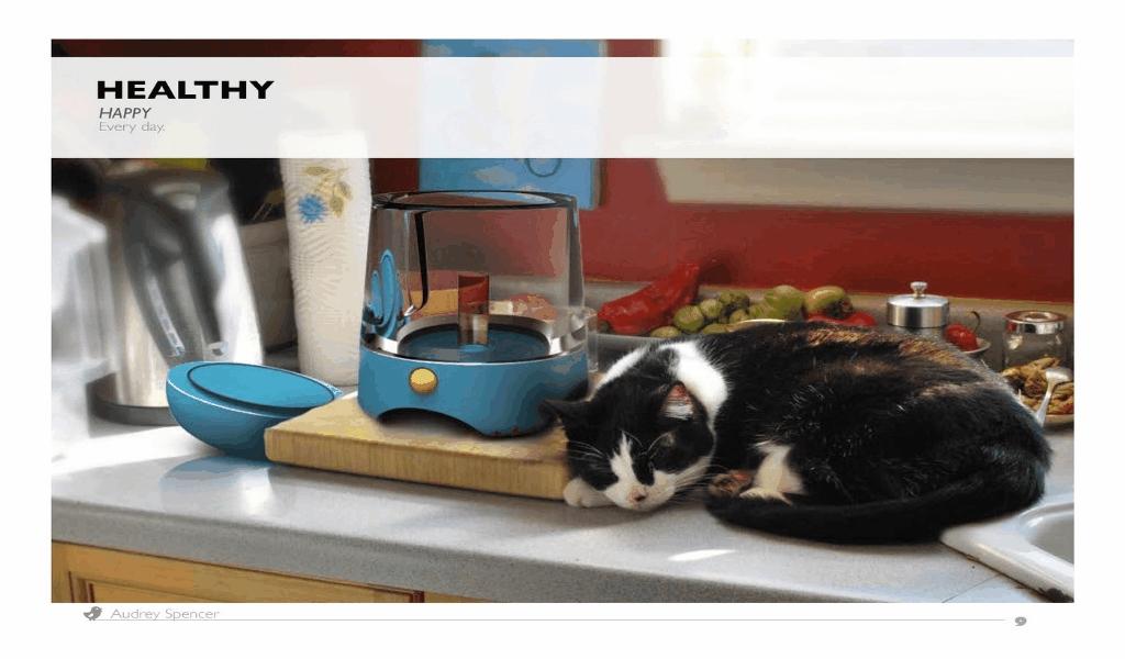 Celluloid & Vinyl Animals Food