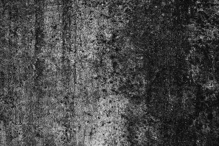 Mold-Removal-Hamilton